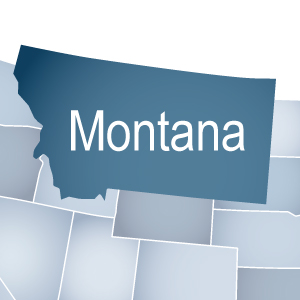 Montana Online Subscription - One-year - Non-Member